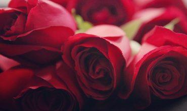 [infographie] La Saint-Valentin, cette année plus d'excuses